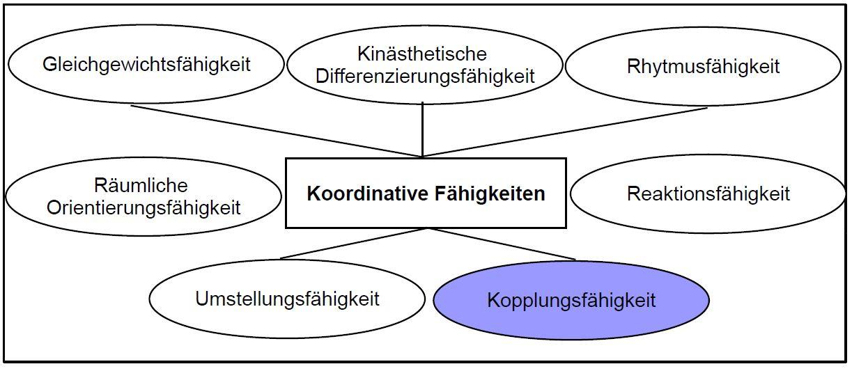 Schema Kopplungsfähigkeit