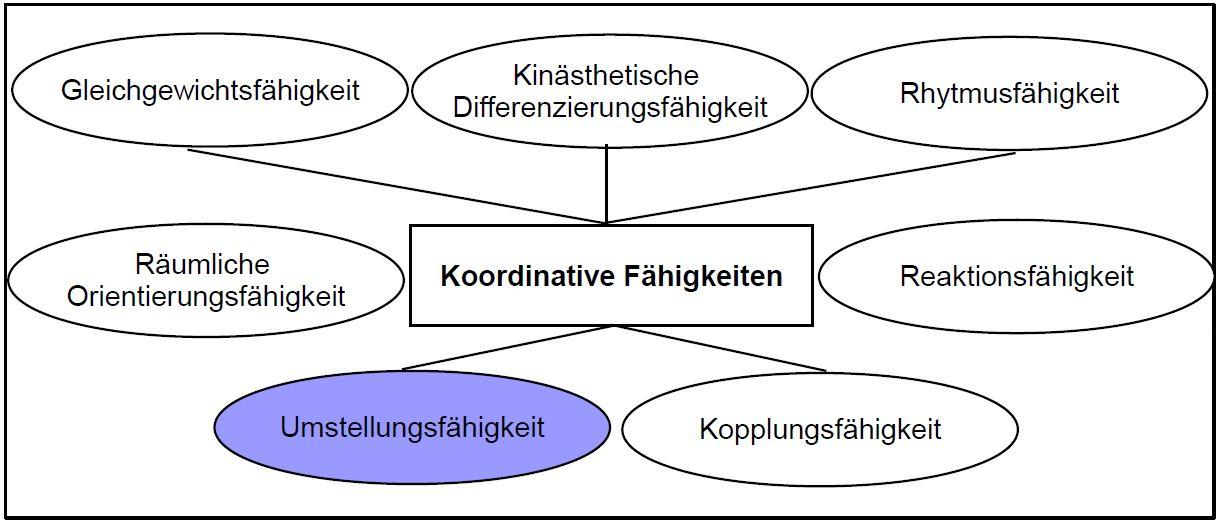 Schaubild Koordination Umstellungsfähigkeit
