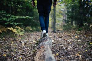 Übung Gleichgewicht Balancieren im Wald